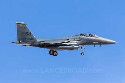 United States Air Force F-15E Strike Eagle - 89-0503 - LSV