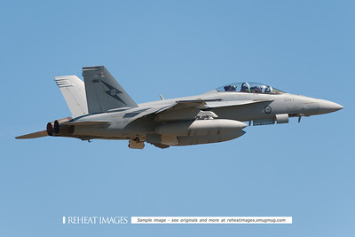 Boeing F/A-18F Super Hornet A44-207 from RAAF 1SQN at 2010 Australian Defence Force Air show, Williamtown NSW.