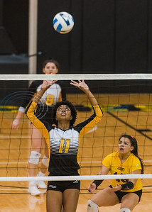 Tyler Junior College's Shara Da Silva (11) sets the ball as her teammates look on during game action against Trinity Valley Community College Friday, Nov. 1, 2019, at Wagstaff Gym in Tyler. (Cara Campbell/Tyler Morning Telegraph)