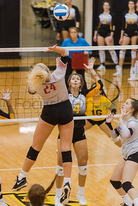 Trinity Valley Community College's Lauren Castles (24) hits the ball as her teammates look on during during game action against Tyler Junior College Friday, Nov. 1, 2019, at Wagstaff Gym in Tyler. (Cara Campbell/Tyler Morning Telegraph)