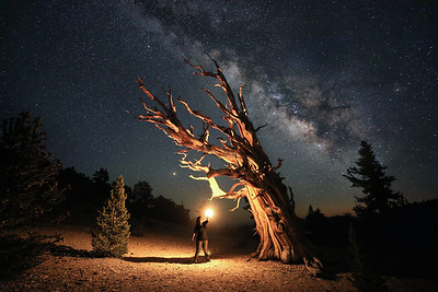 Milky Way and Points of Light