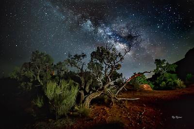 Milky Way in 2018