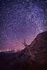 Mesa Verde Star Trails