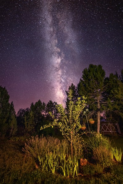 Milky Way in the Garden