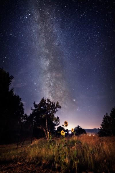 Warm Milky Way Night