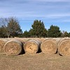 When the hay has been baled the Miller Ranch is ready to hold a racing event.