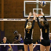 Millsaps Volleyball 2012 : 2 galleries with 310 photos