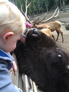 A kiss for Milo?
