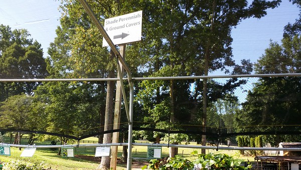 Scottsdale Farms Milton GA Plant Nursery (20)
