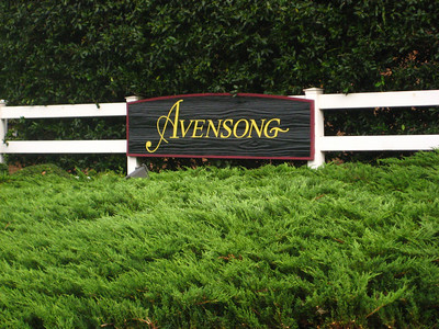 Alpharetta Neighborhood Of Avensong (4)