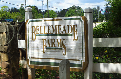 Bellemeade Farms-Milton GA Homes
