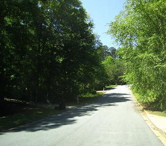 Bentgrass Farms II Milton Georgia (18)
