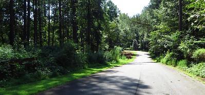 Bentwater Estates Milton Georgia New Home Community (8)