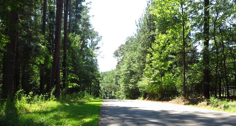 Bentwater Estates Milton Georgia New Home Community (7)