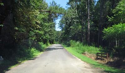 Bentwater Estates Milton Georgia New Home Community (3)