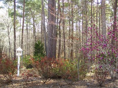 Bethany Oaks Homes Milton GA 30004 (15)