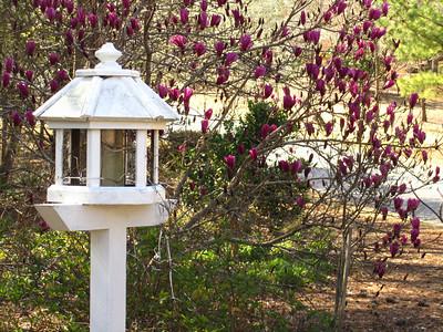 Bethany Oaks Homes Milton GA 30004 (37)