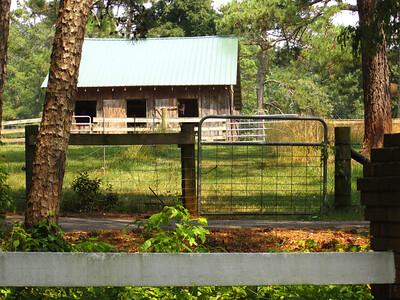 Blue Ridge Plantation Off Thompson Rd Milton GA (31)
