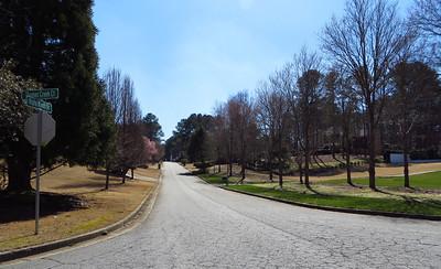 Blue Ridge Plantation Milton Georgia (15)
