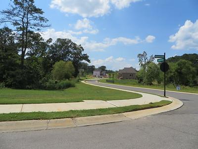 Blue Valley Sharp Residential Milton Georgia Neighborhood (5)