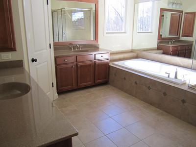 Braeburn John Wieland Milton Georgia Homes 033