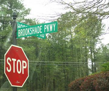 Brookshade Neighborhood Of Homes 30004 (9)