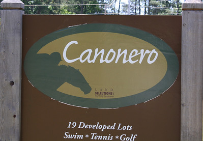 Canonero In Milton Georgia (4)