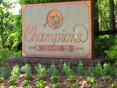 Champions View-Champions Hills Dr  Entrance Off Hopewell (18)