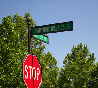 Champions View-Champions Hills Dr  Entrance Off Hopewell (5)