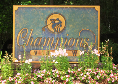 Champions View Milton GA Estate Homes (2)