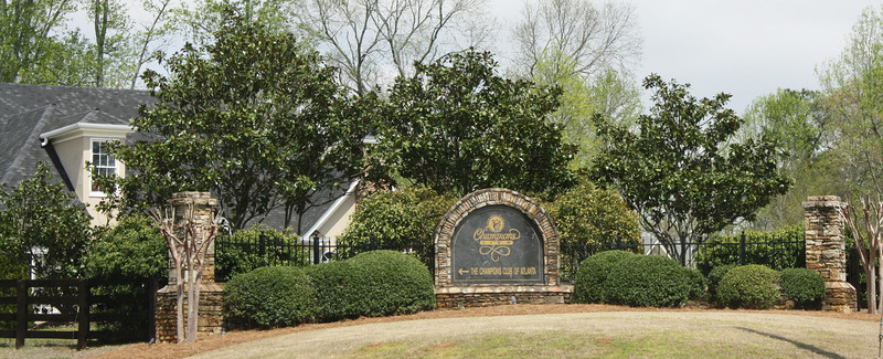 Champions View Milton GA Estate Homes (6)