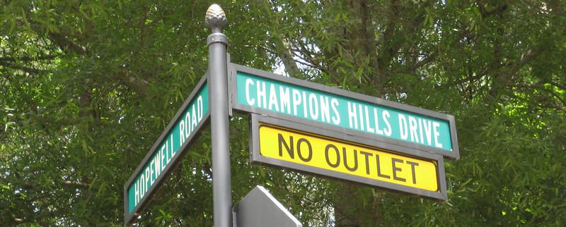 Champions View Milton GA Estate Homes (5)