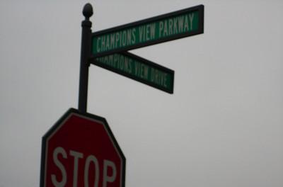 Champions View Milton Georgia Golf Community (4)