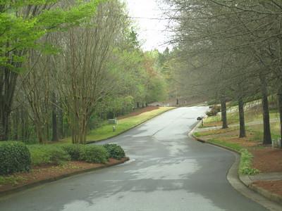 Champions View Milton Georgia Golf Community (67)