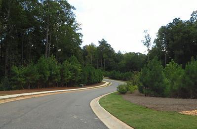 Cogburn Estates Milton Georgia (5)
