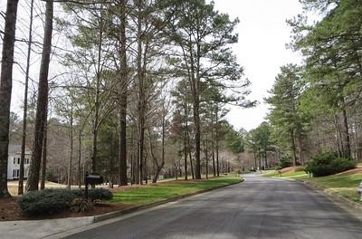 Country Ridge Milton GA (38)