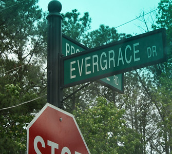 Evergrace Milton GA Community Of Homes (14)