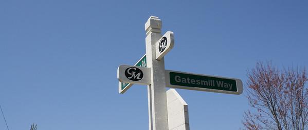 Estate Homes-Gates Mill Milton GA (5)