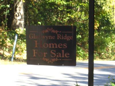 Gladwyne Ridge Milton GA (26)