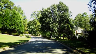 Gladwyne Ridge Milton GA (10)