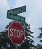 Glenhaven Milton GA Neighborhood Beazer Homes (31)