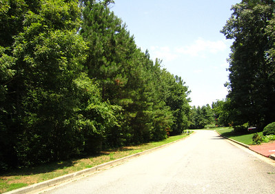 Grass Valley Milton Georgia Community (16)