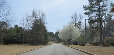 Grass Valley Milton GA (5)