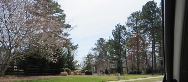 Grass Valley Milton GA (1)