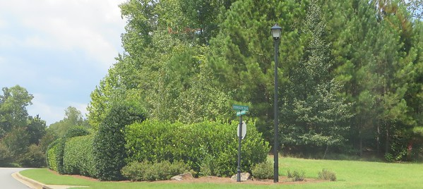 Greystone Milton GA Estate Home Community (2)