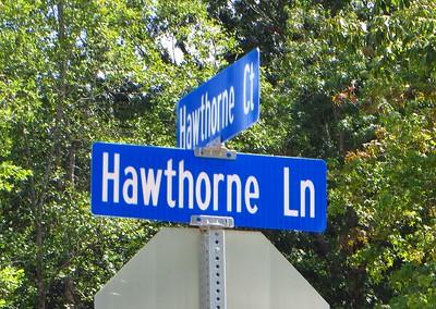 Hawthorne Manor Milton GA Subdivision (13)