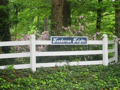 Milton Georgia Henderson Heights Neighborhood (10)