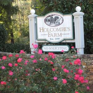 Holcomb's Farm Community-Milton (9)