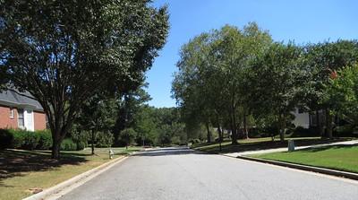 Hopewell Place Milton GA (10)