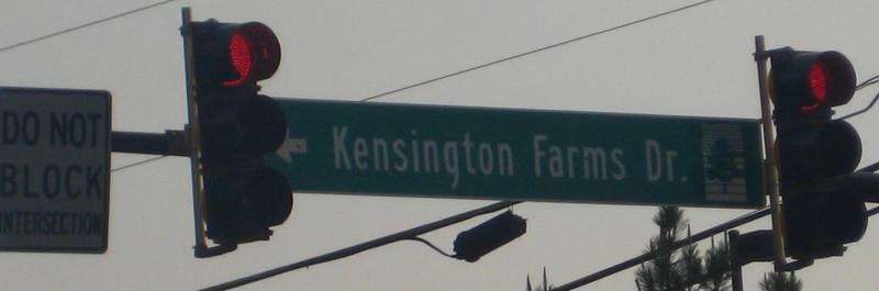 Kensington Farms Milton GA Neighborhood (14)